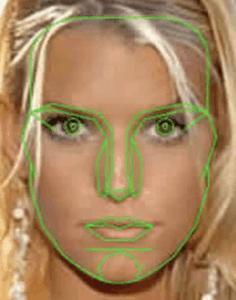 Golden Ratio Face Overlay