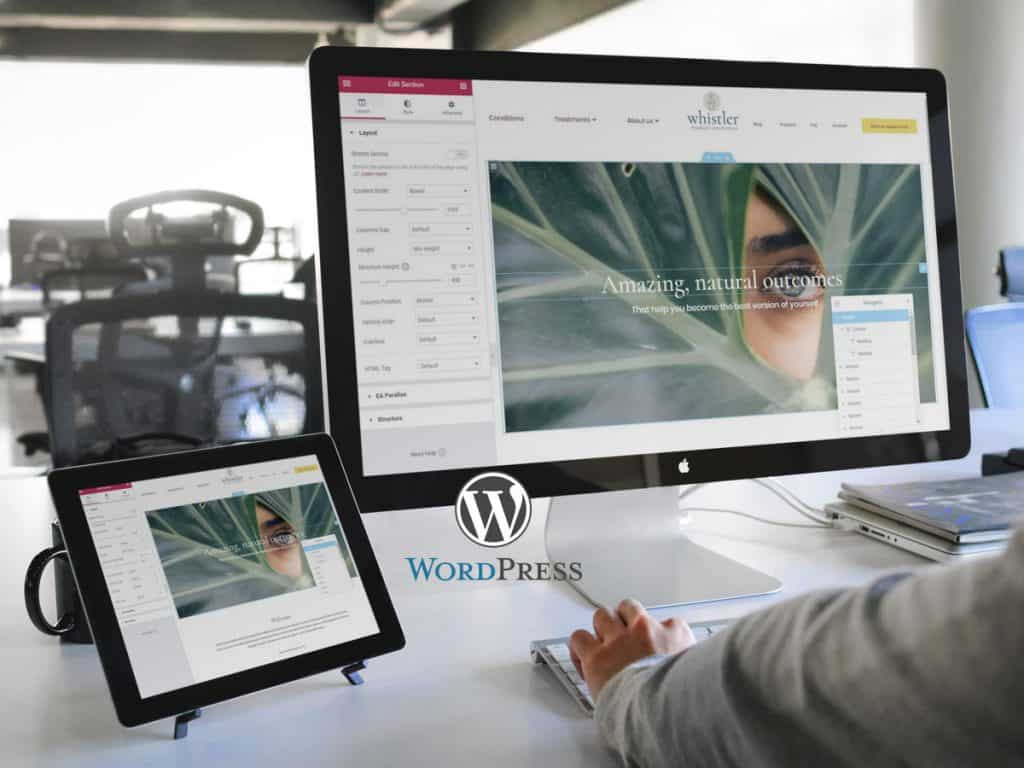 Whistler WordPress Web Design