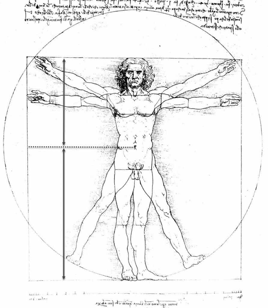 Leonardo Da Vinci Golden Ratio